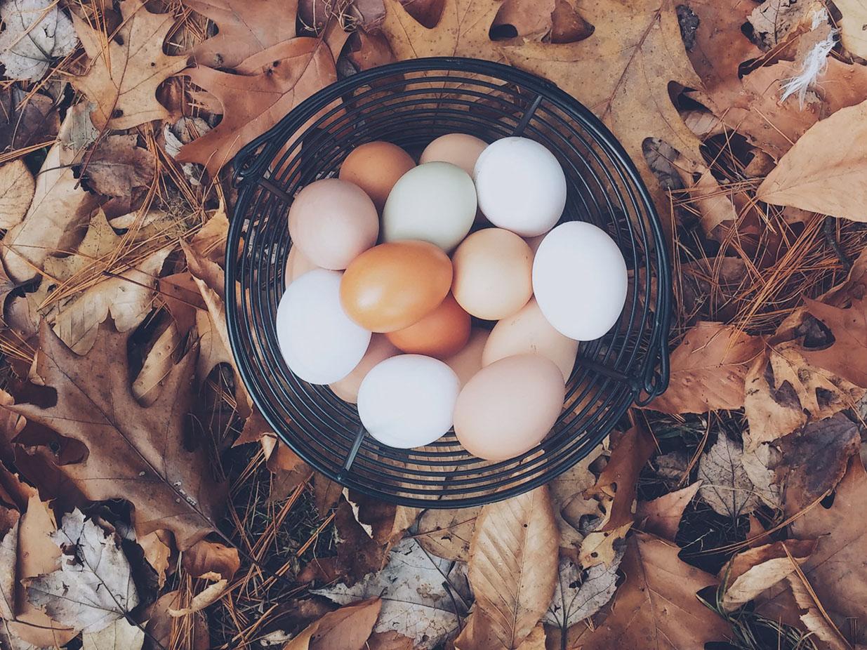 ソーシャルレンディング分散投資の4つの方法とコツ